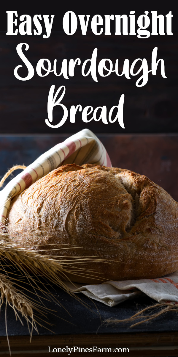 Yes, you can master the art of sourdough baking! This simple artisan sourdough bread recipe is what I learned on, so it's perfect for beginners! Enjoy baking from scratch, feel the pride of cutting into your own homemade loaf of bread, and savor every bite. This bread is perfect for sandwiches, cheesy bread, mopping up pasta sauce, and dipping in soup.