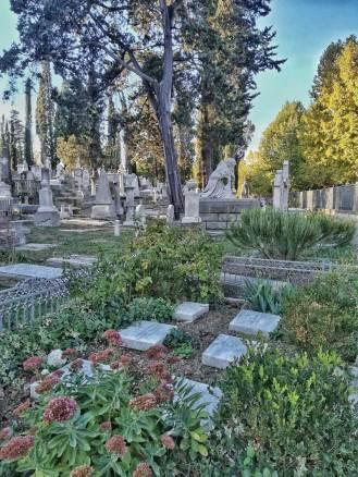 Cimitero_Inglesi_06