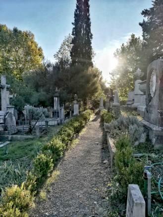Cimitero_Inglesi_07