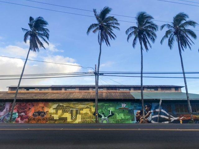 Kauai in viaggio durante un uragano