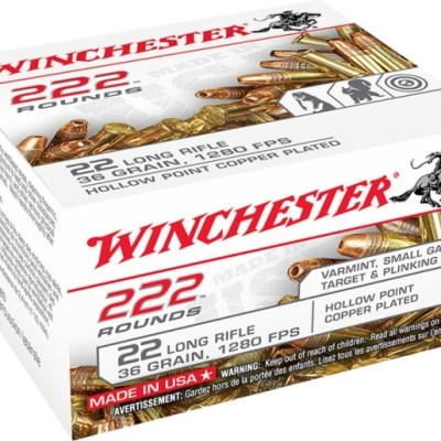 Winchester .22 LR 36gr HP 222rd