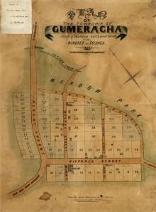 town plan map of Gumeracha, 1860