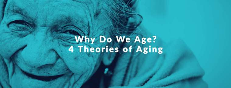 why do we age theories of aging