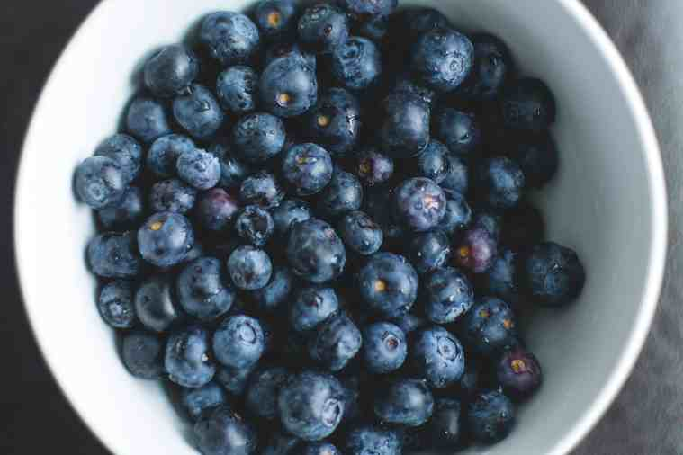 free radical theory of aging blueberries antioxidants