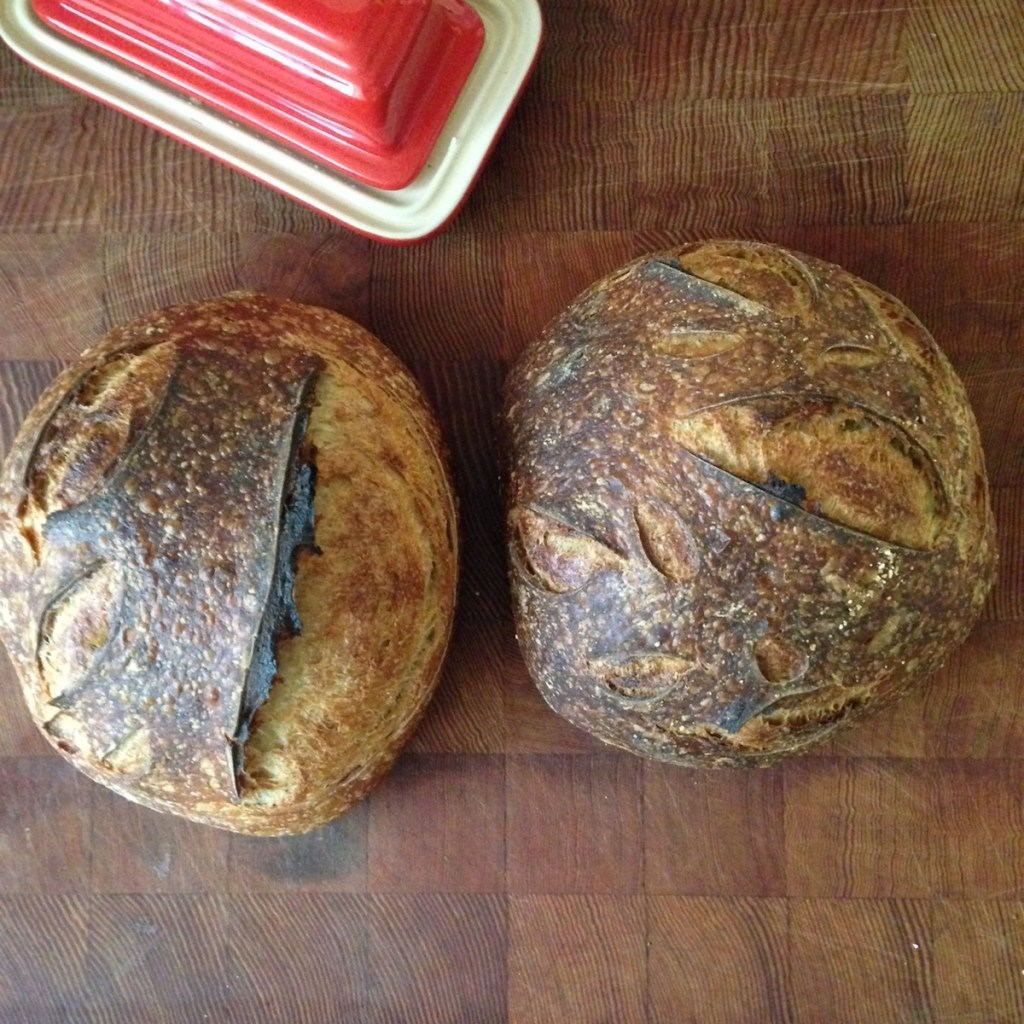 Two sourdough loaves