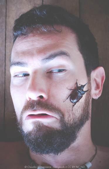Scarabeo sulla faccia