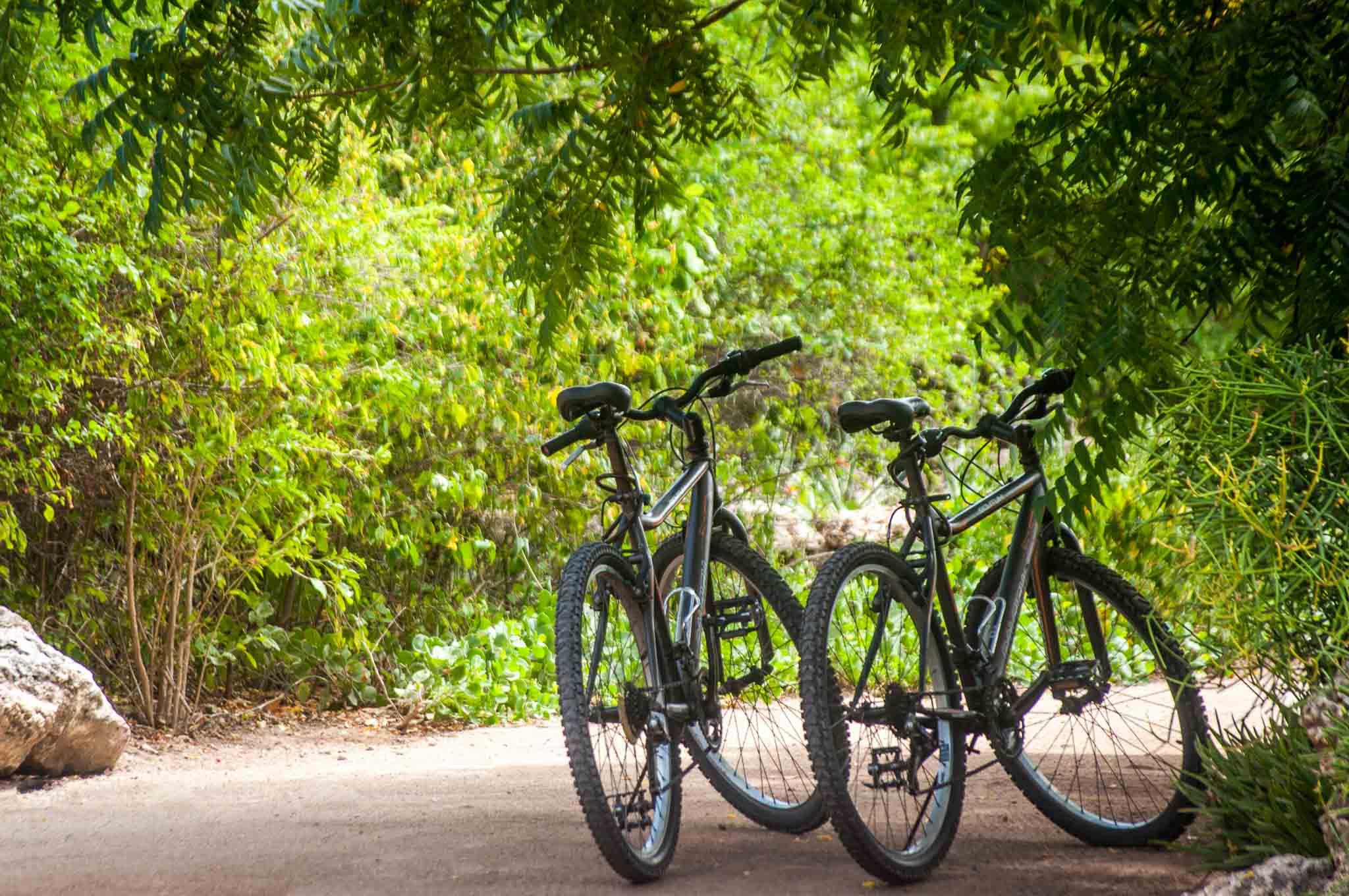Free Mountain Bikes