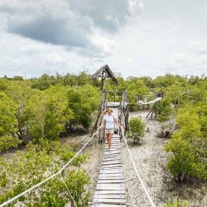 bridge over mangroves in Mida Creek
