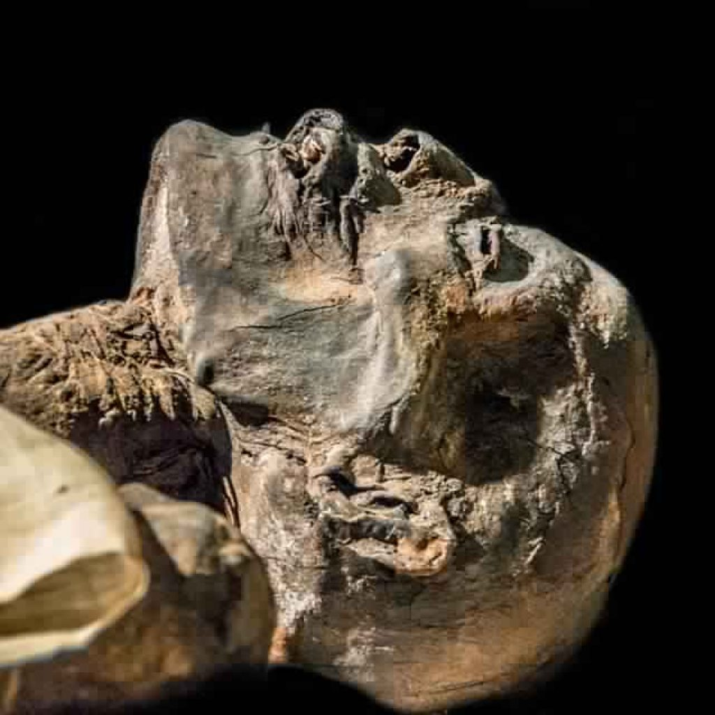 The Egyptian Mummies