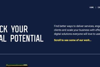 Digital agency website copy pic