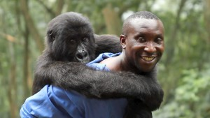Virunga-on-Netflix