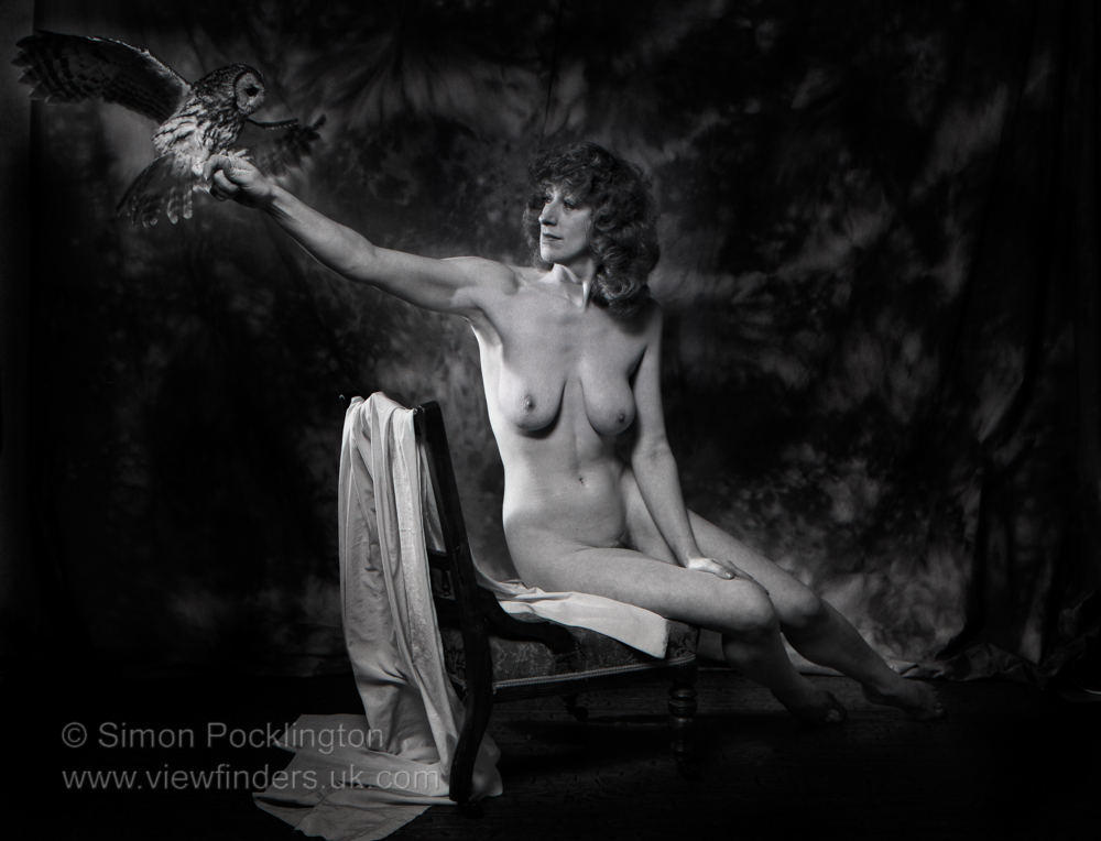 nude or naked portraits of women