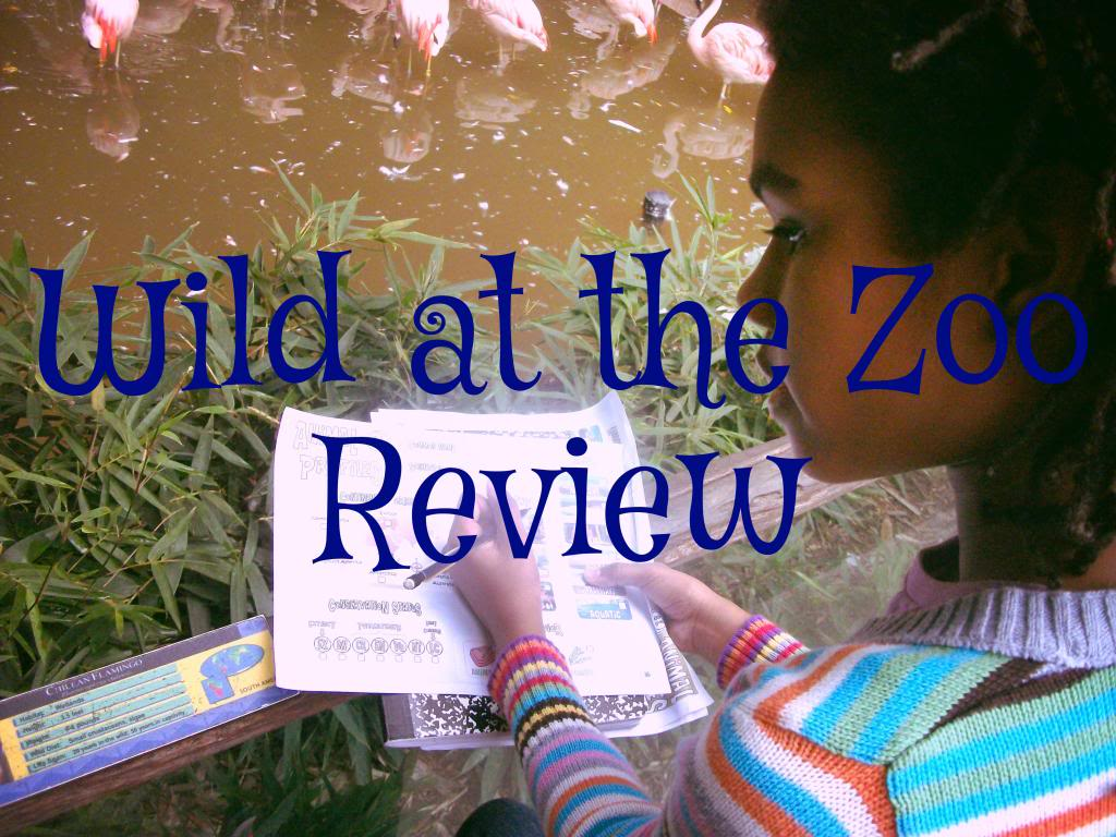 Review Wild At The Zoo