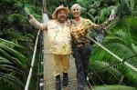 Dschungelcamp 2012: Und hier sind sie! - TV