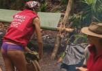 Dschungelcamp 2012: Micaela Schäfer fliegt raus! Ausgemopst im Dschungel! - TV News