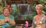 Dschungelcamp 2012: Jetzt gehts rund! Ab in den Dschungel!