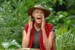 Dschungelcamp: So erwürgte sich Brigitte Nielsen ihre Sterne! - TV News