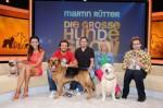 """""""Martin Rütter - Die große Hundeshow"""" mit Verona Pooth, Susanne Fröhlich, Paul Panzer und Steffen Henssler - TV"""