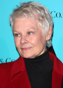 """Judi Dench - Tiffany & Co. Presents the Winter Party Celebrating the Opening of """"Skate at Somerset House"""" Ice Rink in London on November 21, 2011"""