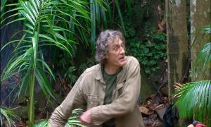 Dschungelcamp 2014: Lästeropfer Winfried! - TV News