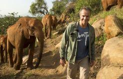 """Er hilft! - """"Hannes Jaenicke: Im Einsatz für Elefanten"""" heute im ZDF!"""
