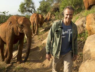 """Er hilft! - """"Hannes Jaenicke: Im Einsatz für Elefanten"""" heute im ZDF! - TV News"""