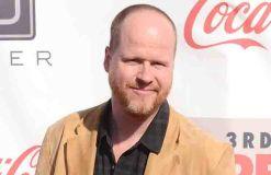 """Joss Whedon: """"The Avengers 2: Age of Ultron"""" war ein Kampf"""