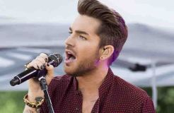 """Queen"": Kein Album mit Adam Lambert"