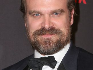 David Harbour - Weinstein Company and Netflix 74th Annual Golden Globes After Party