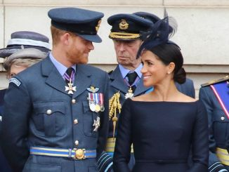 Prinz Harry - Herzogin Meghan - 100th Anniversary of the Royal Air Force at Buckingham Palace in London