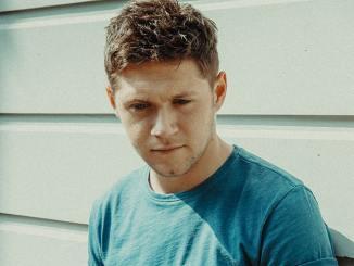 "Niall Horan: Seine Karriere ist wie ""Der seltsame Fall des Benjamin Button"" - Musik News"