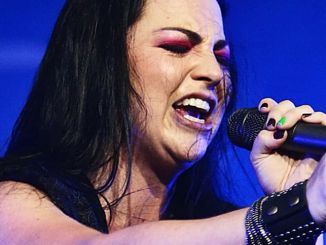 Amy Lee - Evanescence - Rock im Park Music Festival