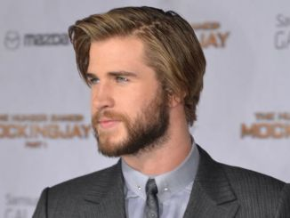 "Liam Hemsworth - ""The Hunger Games: Mockingjay - Part 1"" Los Angeles Premiere"