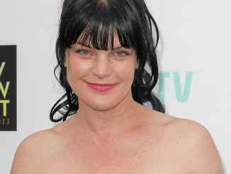 "Pauley Perrette: Für immer ""Navy CIS""? - TV News"