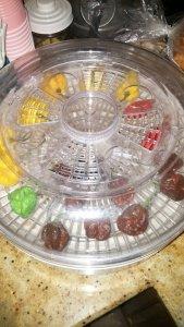 lid on food dehydrator