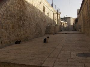 6Jerusalén-lqs.