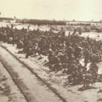 X Jornadas en torno al campo de concentración de Albatera