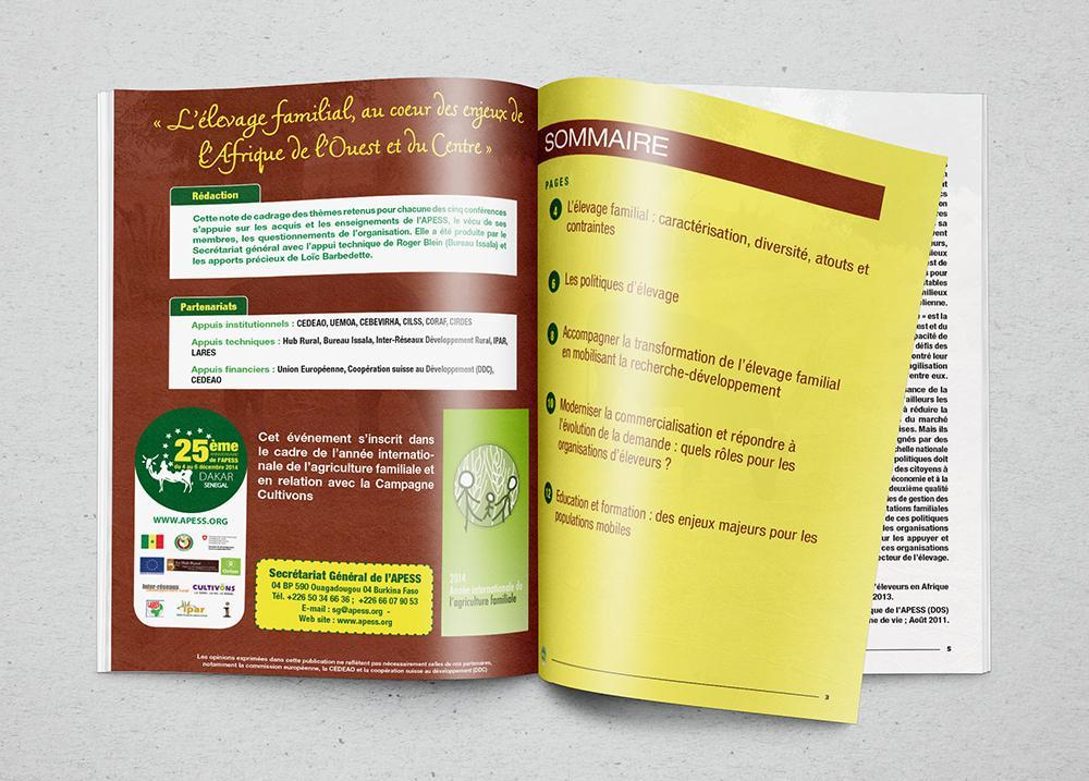 2-Brochure Note thématique - APESS