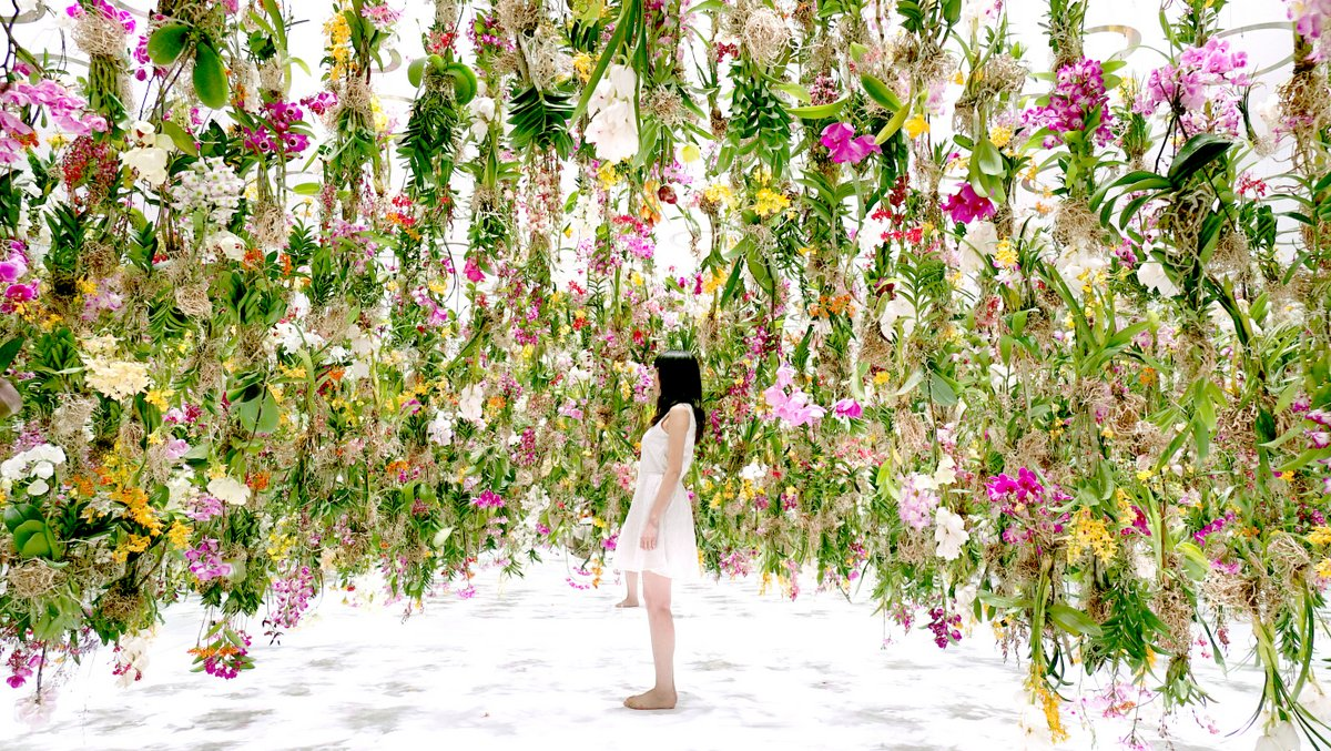 Floating-Flower-Garden_12-1