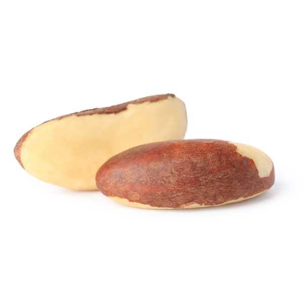 Brazil-nut Brazil Nuts