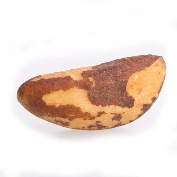 Brazil-nuts-individual- Brazil Nuts