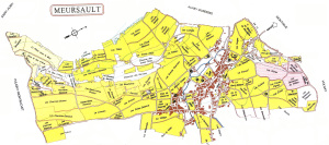 Meursault: Kort (vin)