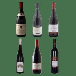 Pinot Noir - Smagekasse med 6 forskellige vine