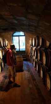 Kælderen ved Nottola i Montepulciano