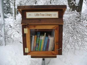 little-free-lib-example