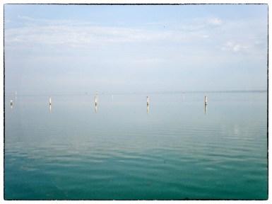 Pali nella laguna di Grado