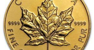 maple leaf or investissement canada