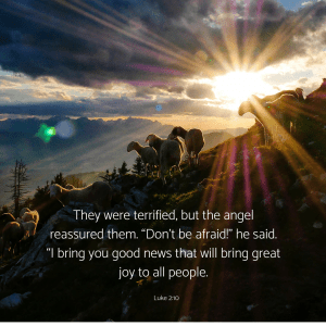 "They were terrified, but the angel reassured them. ""Don't be afraid!"" he said. ""I bring you good news that will bring great joy to all people."