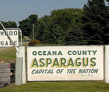 Oceana County is the Asparagus capital of the nation