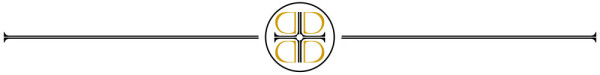 LD Logo Break